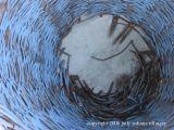 the blue basket
