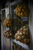 Oranges and Pomegranates #0427