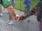 Remembering ~ Vietnam . . .