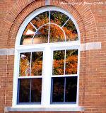 Seeing Through Autumn.