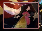 July 4 ~Happy Birthday America!