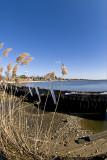Bayport Bulkhead