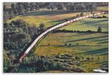 1200 ft Train