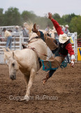 06-07 Rodeo 05.JPG