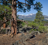 08-05 San Francisco Peaks from Cinder Hills.JPG