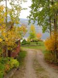 Fall Garden3.jpg