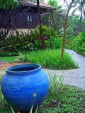 Blue Pot.JPG