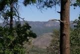 Mt. Ord Road