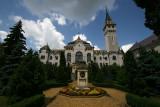 city hall in Târgu Mure&#351