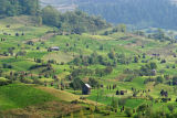 typical landscape in Maramures