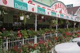 Hotel Darina in Targu Mures