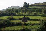 terrace landscape
