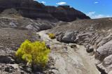 The Painted Desert Blue Mesa Trail