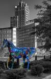 Syracuse Horse