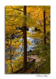 Brandywine Falls, CVNP