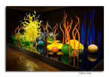 Chihuly Illuminated- Columbus Museum of Art