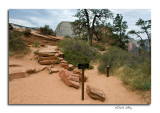 Trail to Angel's Landing , Scout Lookout