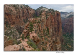 View of The Trail to Angel's Landing