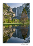 Yosemite Falls Gallery- CLICK  to ENTER