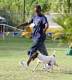 Barbados Kennel Club Dog Show