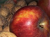 Les fruits d'hiver