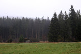 Harz National Park 4.jpg