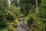 Harz National Park 5.jpg