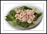 Prawns on lettuce