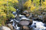 Clear Creek along Geneva Pass