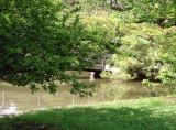 pond and footbridge