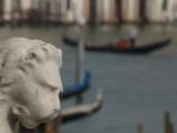 Lion de Venise -1160121.jpg