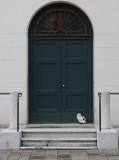 gatto di Venezia 1150497.jpg