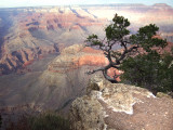 The Grand Canyon  USA