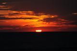 sunrise 10-23-2009-1 2.jpg
