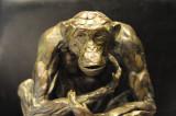 Bart Walter chimp 2.jpg