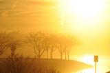 golden sunset with fog 2.jpg