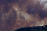 Smoke on the canyon rim