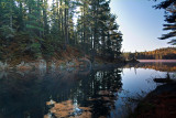 Early Morning at Beaver Pond I