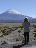 Karin at Lauca National Park