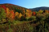Sugar Creek Fall Mountain Scene rdx tb10081a