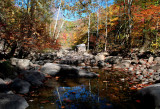 South Fork Fall Stream Pool Reflection tb10081k