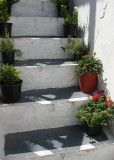 staircase with pots