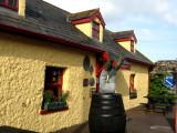 Ned Natterjacks in Castlegregory
