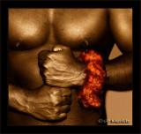 Power:  Lei Ohai Ali'i  (Sepia Mix)