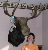 Taxidermists keep busy in Idaho and Montana. This is in my Cambridge hotel, pre-trip.