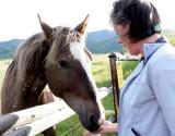 Horse-Helen bonding