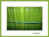 Green ceramic wall and handrail, Paris