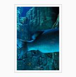 Oceanario 4