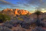 Joshua Tree Rocks At Sunrise 25496