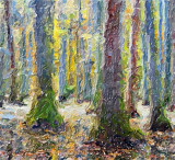 Cypress Swamp In Autumn 25111 Art